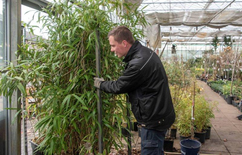 Jan-Willem: 'Ik heb geleerd om planten te herkennen.'