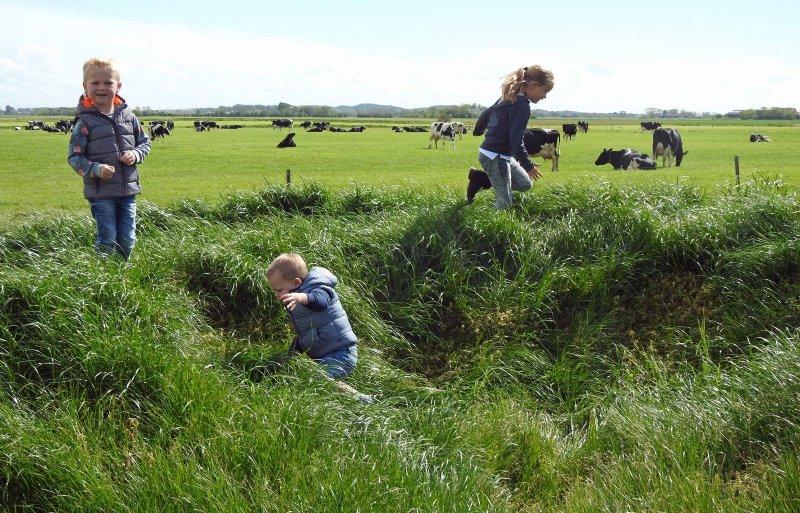 Aan de achterzijde van het bedrijf komt een agrarische kinderopvang met uitzicht op de weilanden en koeien.