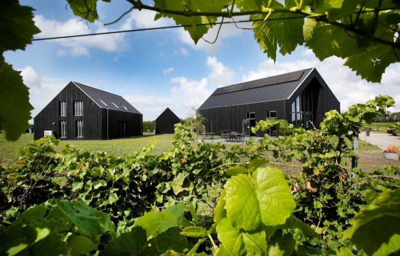 Het nieuwe wijnbelevingscentrum, met werkschuur en woning