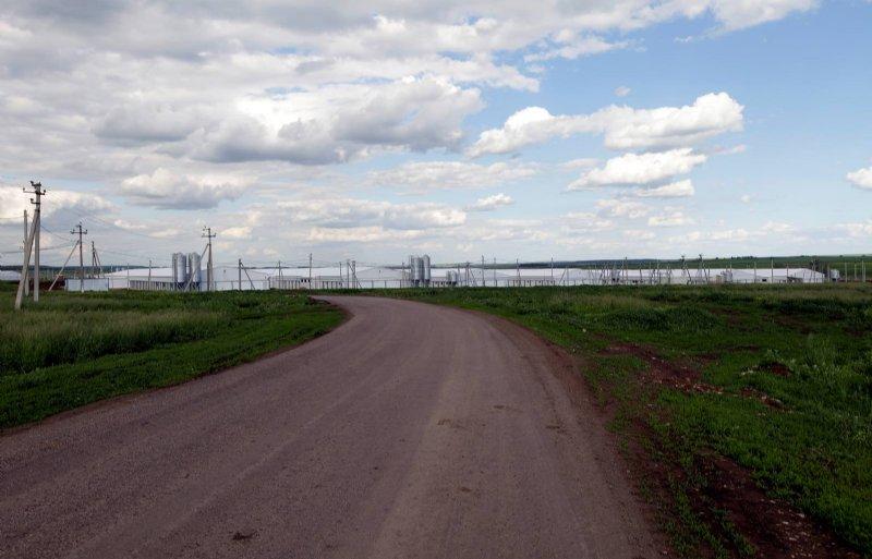 De Russische overheid verwacht dat het aantal varkensplaatsen de komende jaren met 6 procent per jaar toeneemt.