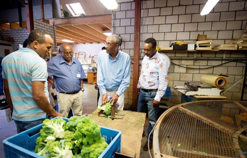 Een delegatie uit Ethiopië bezocht diverse Limburgse bedrijven, waaronder 't Gruntehöfke in Grubbenvorst.