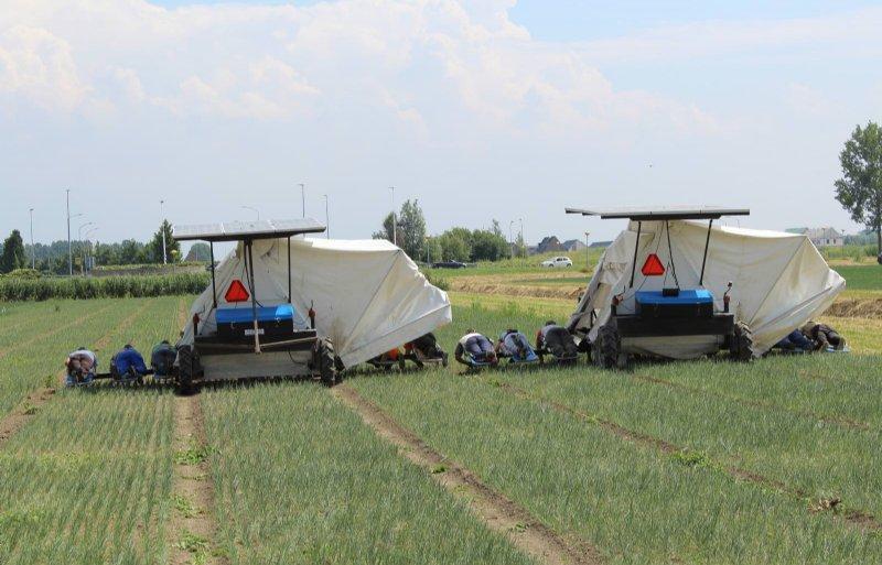 Van de Solar Weeder zijn driehonderd stuks gebouwd.