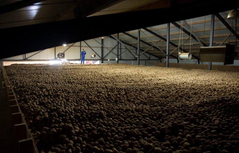 Boeren bleven door de slijting van de horeca met hun frietaardappelen zitten.