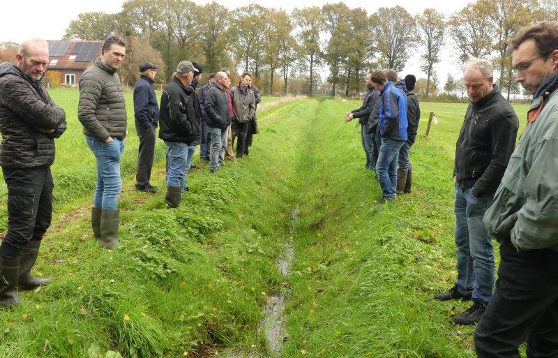 In slootjes tussen percelen worden in het project stuwtjes geplaatst om water vast te houden.