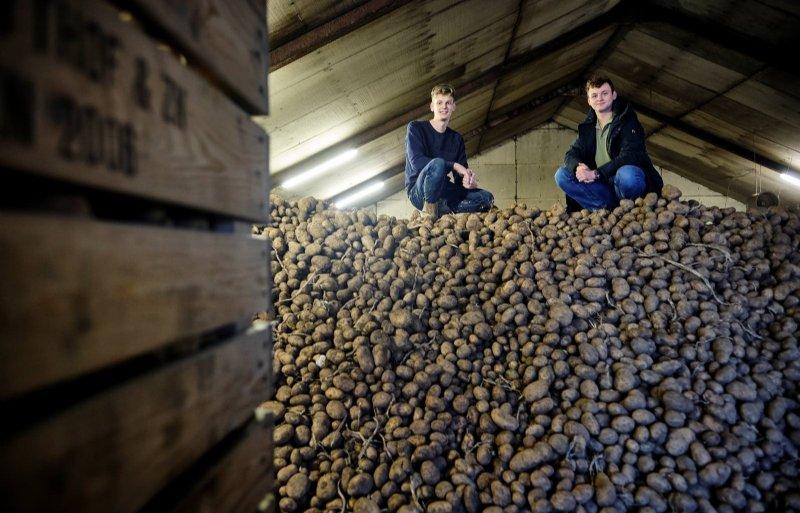 Mels Kooij en Bas Peeters van Aardappels-Online mikken op uitbreiding, met producten uit de Hoeksche Waard.