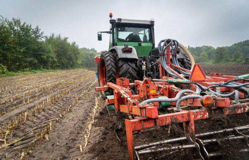 Nazaai: na het oogsten van de mais en een grondbewerking wordt het vanggewas gezaaid.