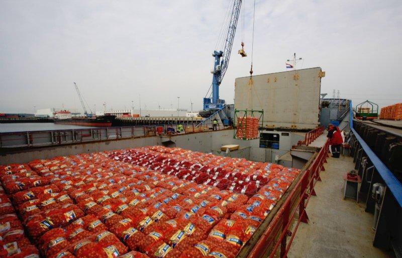 Uit de exportcijfers van Nederlandse uien van GroentenFruit Huis blijkt dat tot halverwege september ruim 208.000 ton is verkocht aan het buitenland.