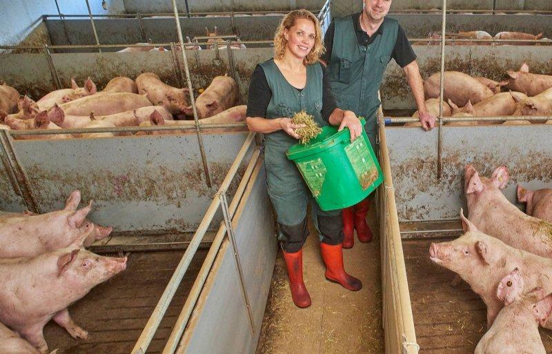 Johan en Marlies Jacobs hebben het kernfokbedrijf gesloten gemaakt met het houden van vleesvarkens.