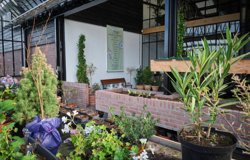 Demente ouderen zijn drie keer per week in deze tuin aan de slag.