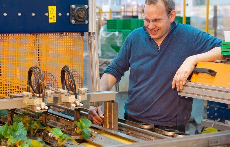 De sorteermachine zorgt voor uniforme planten in orders
