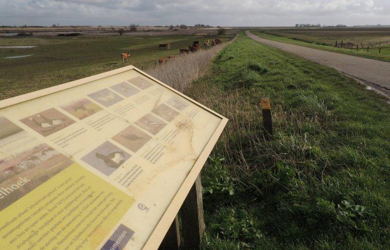 Links van de weg is al natuur, rechts blijft landbouw.