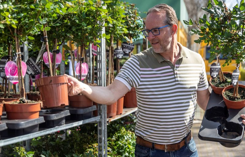 Sjaak Buijs (51), potplantenkweker in De Lier