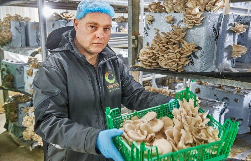 John Verbruggen (47), oesterzwammenkweker in Erp