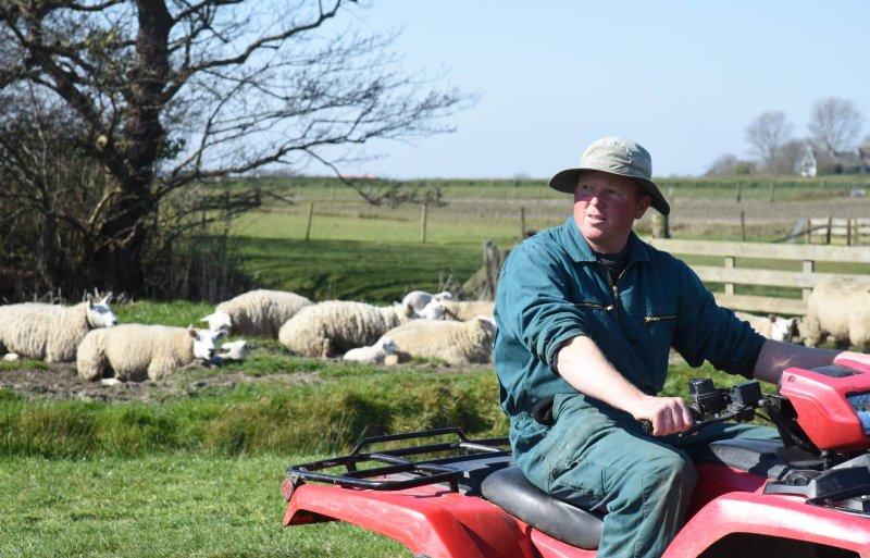 Jan-Willem Bakker (41), schapenhouder in Den Burg