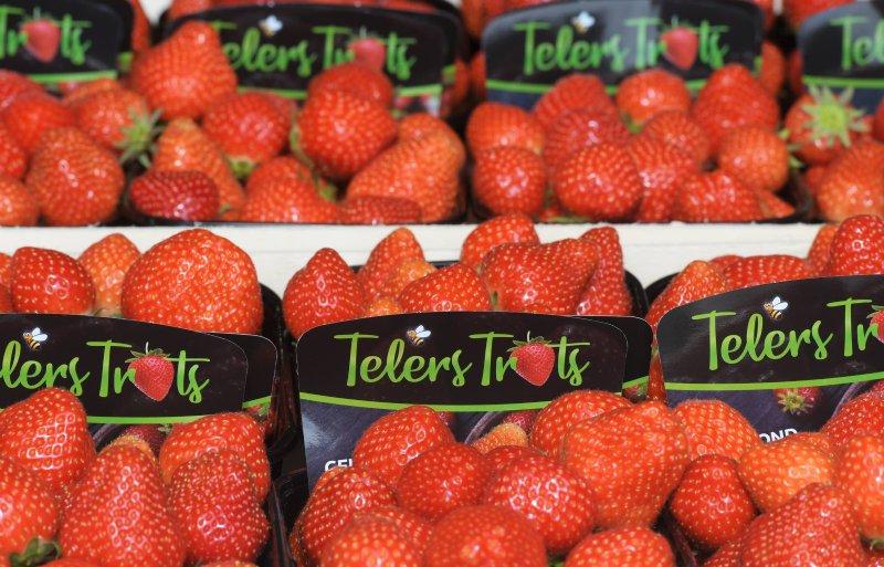 Telers Trots, lokaal merk van Van As en drie collega's.