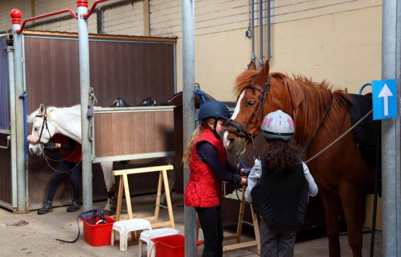 Op stal wordt eenrichtingsverkeer toegepast.