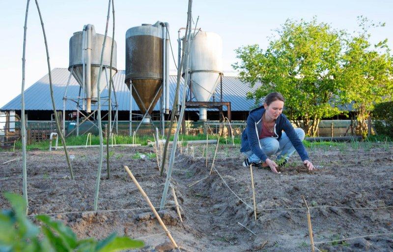 Danique Kottelenberg doet in haar moestuin kennis op over het telen van planten.