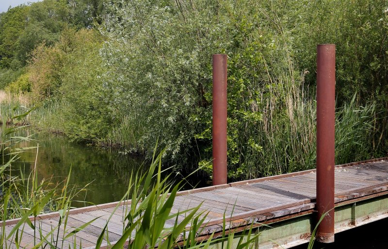 Het natuurgebied heeft waterplassen en bruggetjes.