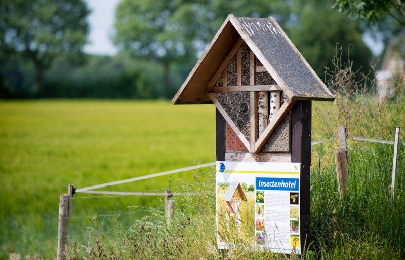 Het insectenhotel biedt onderdak aan nuttige insecten.