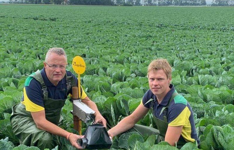 Cok van der Maarl (links) en zijn collega Richard Paalman installeren een digitale vangval voor koolmotten in een perceel spruitkool.