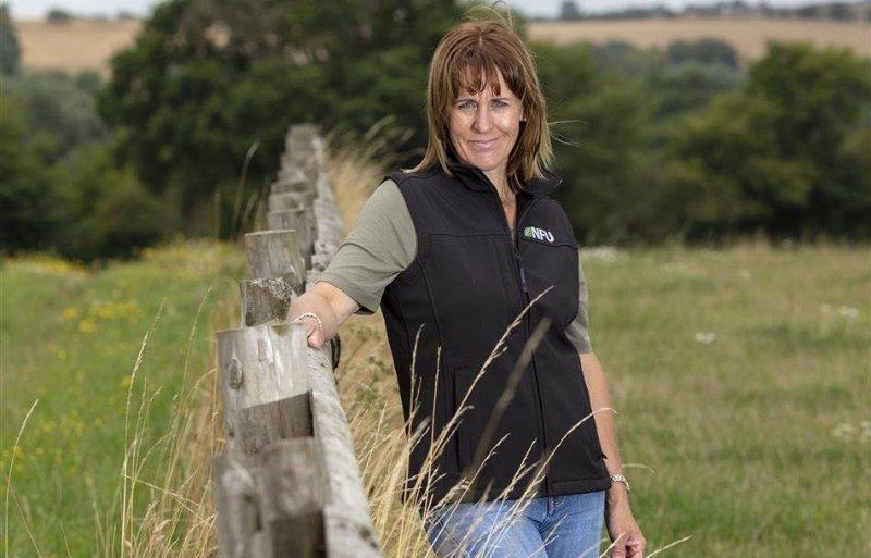 Minette Batters, voorzitter van de Britse land- en tuinbouworganisatie NFU.