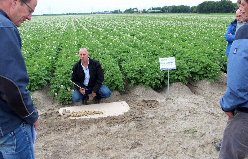 Ian Hale van Profytodsd geeft uitleg over de bladmeststof Foliar Extra NRG in pootaardappelen.