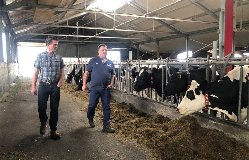 Harrold Liebeton (rechts) en Bert-Jan Verboom hebben met andere melkveehouders rond de Nieuwkoopse Plassen een plan bedacht om stikstof te verleasen aan bedrijven als Rotterdamse Haven en Schiphol.