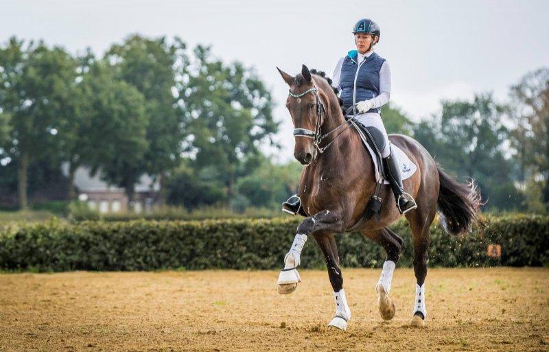 Angelique van Dijk rijdt in de top van de dressuursport.