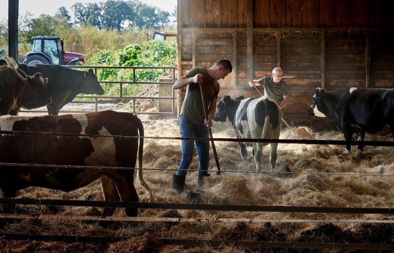 Vaste mest gaat in de nieuwe stal een nog belangrijkere rol spelen.