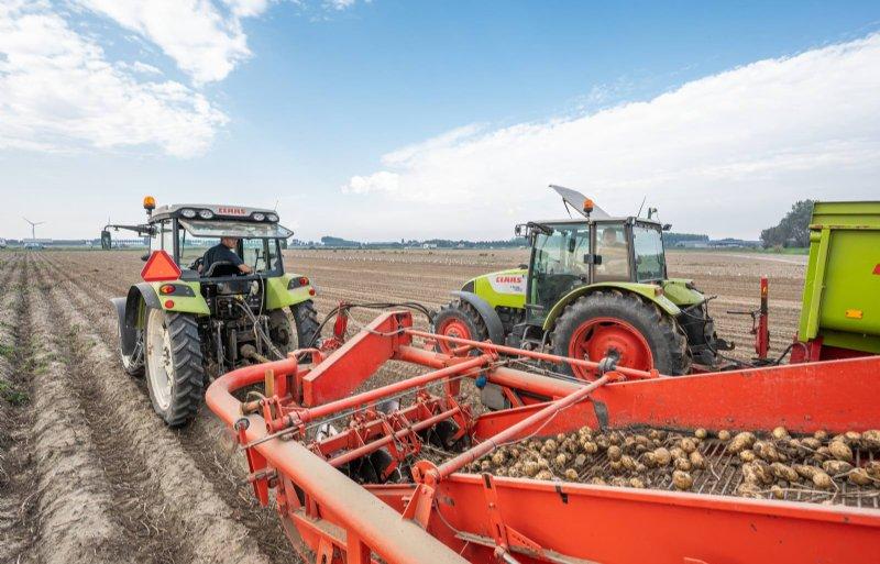 Contractvolumes volleveren is veelal voldoende voor aardappeltelers.