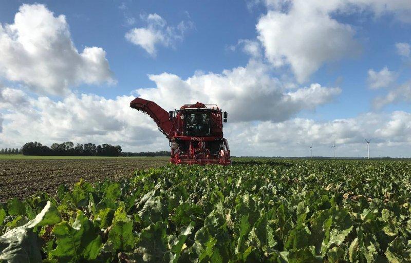 LTO Noord speelt een leidende rol in de belangenbehartiging van boeren en tuinders.