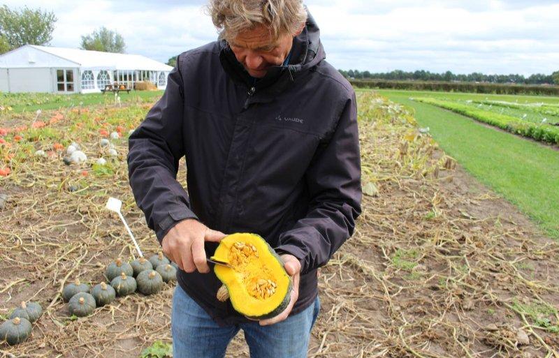 Hoofdveredelaar Marcel van Diemen snijdt een schijfje vruchtvlees van een groene pompoen voor een smaaktest.