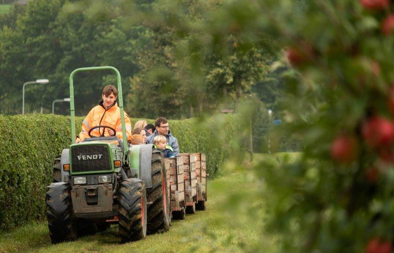 De pluktrein bracht de bezoekers naar de boomgaard.
