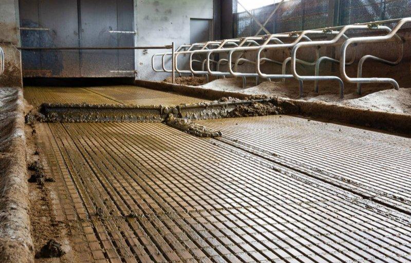 De W5-vloer van HCI: een blokjesvloer met gootjes en een afschot naar een giergoot in het midden.