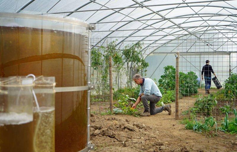 Frank Wagenberg in de kas met de Eco Oasis