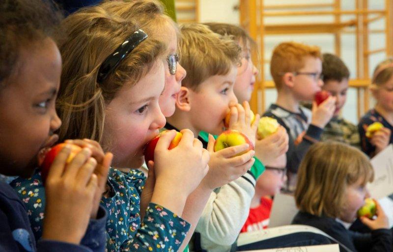 Kinderen worden gezonder als ze op school gezond lunchen en gevarieerd bewegen.