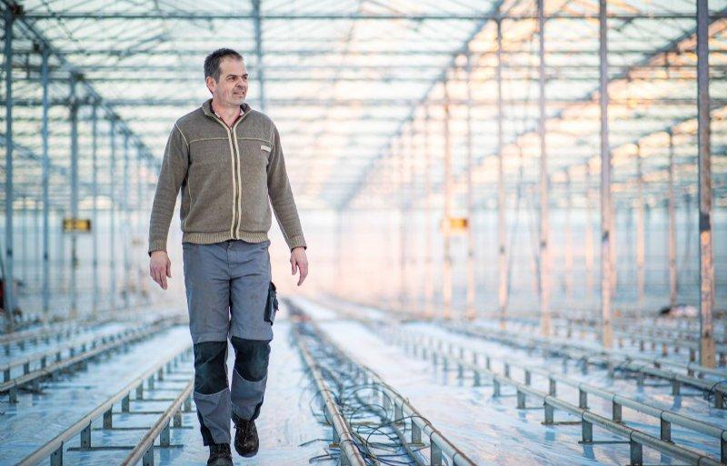 Geert Bouten start begin december met het planten van oranje paprika's.