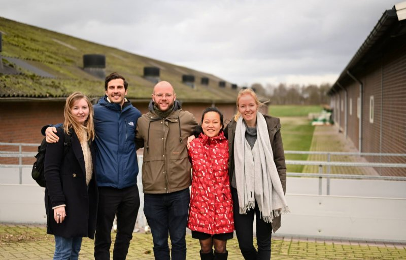 De SFYN deelnemers die zich bogen over de vraag van Het Beste Idee van Varkensland