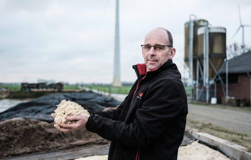 Arnold van Schriek oogstte de mais dit jaar voor het eerst als maiskolvenschroot.