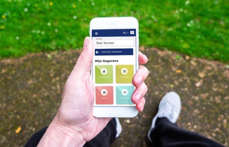 Vion-blockchainportal dashboard-phone