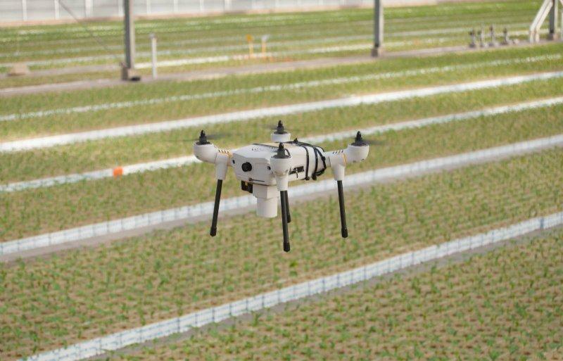 Na veel testen vliegt de drone zelfstandig door de kas.