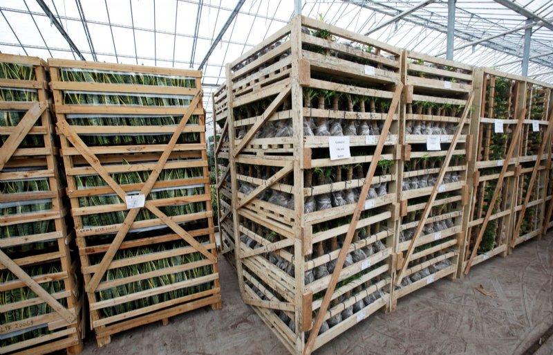 Houten containers uit China zijn niet recyclebaar.