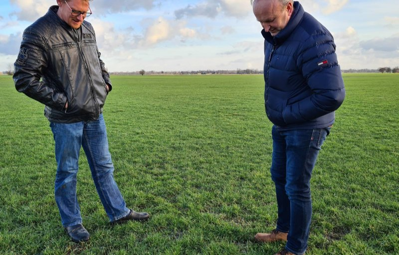 Johan Vlijm (links) en Hans van Beuzekom inspecteren een grasperceel op ganzenschade.