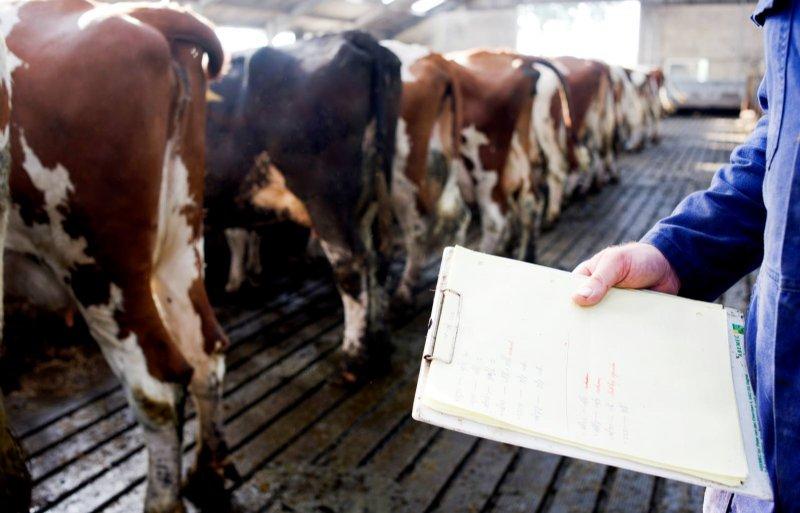 Een oudere veestapel getuigt van vakbekwaamheid.