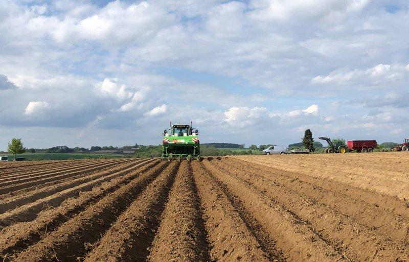 Loonbedrijf Vaessen uit Landgraaf bewerkt in 2020 aardappelruggen met gitterrollen.