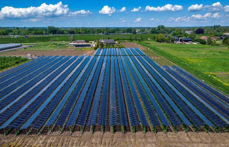 Overzicht van de zonnepanelen op het fruitteeltbedrijf van Rini Kusters, die zijn geleverd door GroenLeven.