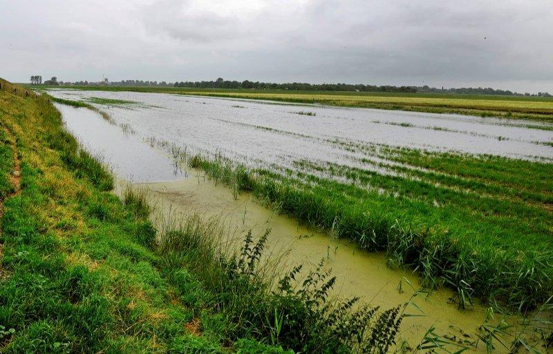 Wateroverlast in de Zijpe  gezien vanaf de Westfriesedijk