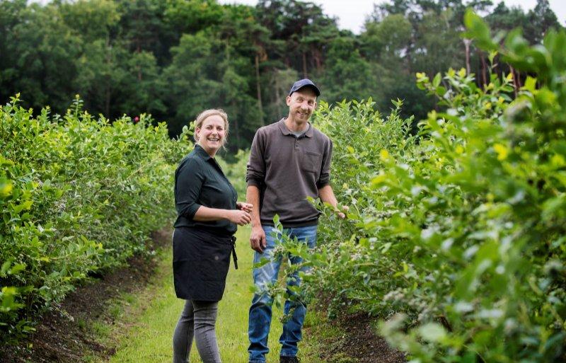 Thim van den Berg houdt zich voornamelijk bezig met de bessenkwekerij, zijn zus Laura runt Plantage Blankwater.