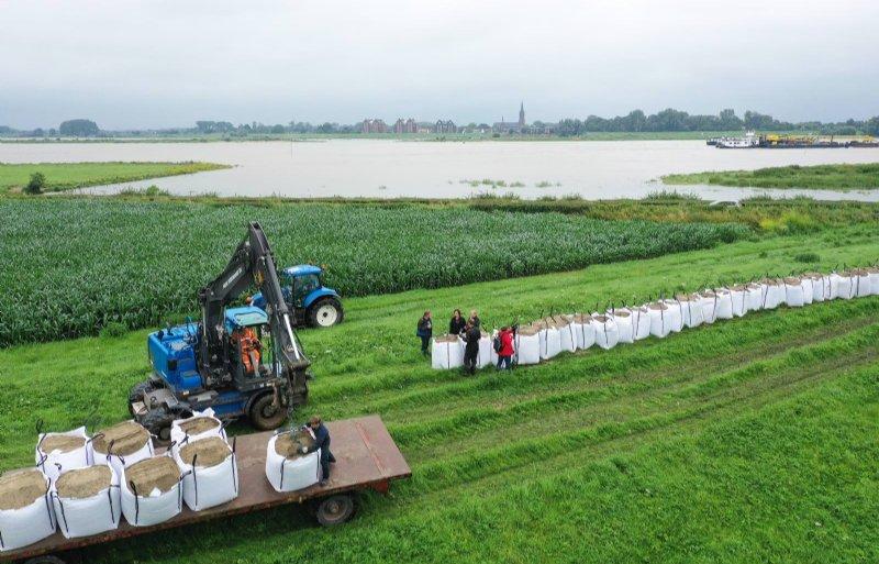 Boeren tussen het Gelderse Dodewaard en Ochten probeerden met man en macht hun oogst te redden.