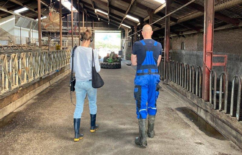 Melkveehouder Ruud Hamans in Roermond staat de NOS te woord.